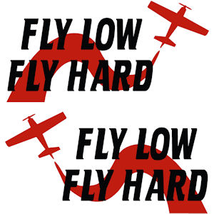 00384<br>Fly Low Fly Hard<br>Set of 2